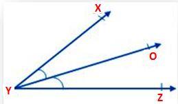 Geometric Terms 4